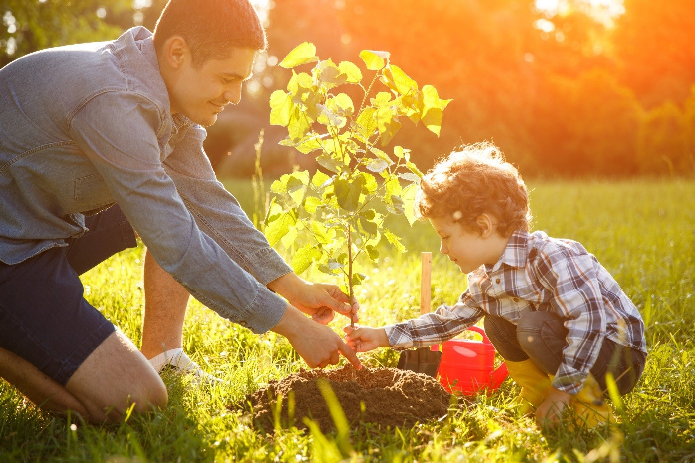 planting a tree.jpg